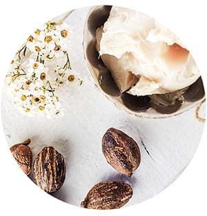 Biotulin Natural Ingredient - Shea Butter